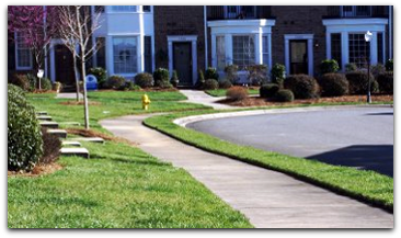 North Carolina Piedmont and Foothills Regional Landscaping ...